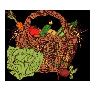 panier bio local saison fermier commande en ligne